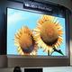 Mitsubishi začne prodávat první velký OLED displej na světě